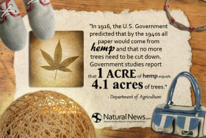 Government predicted that by the 1940s all paper would come from hemp ...