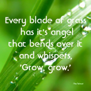 Every Blade of Grass Quote Magnet by QuoteLife