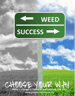 Choose Your Way: Weed or Succeed