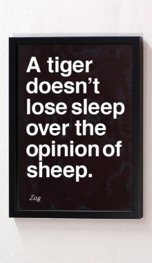 tiger doesn't loose sleep over the opinion of a sheep.