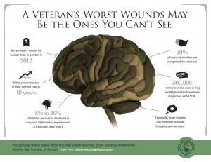 Veterans Day Infographic