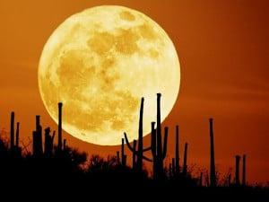 Romantic Wallpaper Moon Night