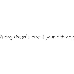 Quote rom marley and me
