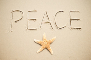 Peace:: For Our World:: Mattie Stepanek