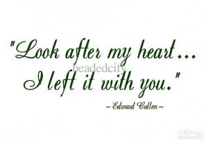 funlife]-10pcs/lot EDWARD CULLEN QUOTE LOOK AFTER MY HEART...Vinyl ...