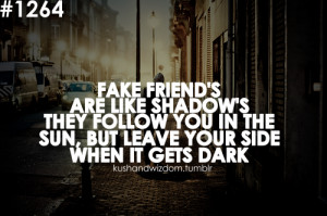 Fake friend's are like shadow's they follow you in the sun, but leave ...