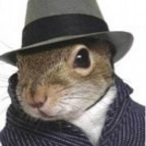 SquirrelQuotes