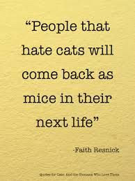 mice cats hilarious quotes karma cat quotes kitti hate cat past life ...