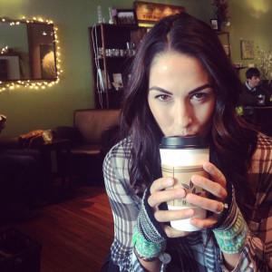 Brie Bella Instagram Post January 30 2015http//instagramcom/p