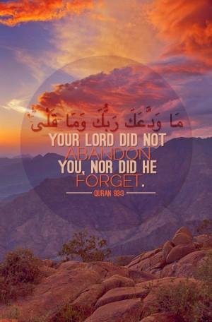 Naveed Shamem 6:32 AM