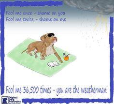Funny Rainy Weather Quotes Rain storm, pitbull funny,