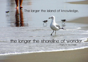 Beach Walk Quote Photograph