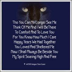 Quotes About Cats Dying | forum code 1 url http www smileyvault com ...