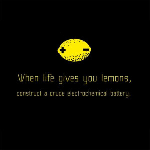 Vh-When-Life-Gives-you-Lemons-Funny-Quote.jpg