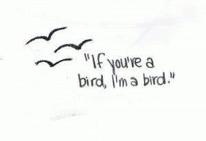 bird movie quote the notebook
