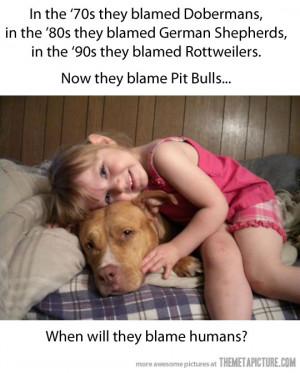 funny dangerous dogs Dobermans Rottweiler Pit Bulls