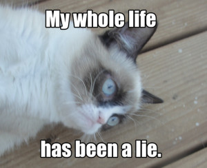 Grumpy Cat -My whole life has been a lie.