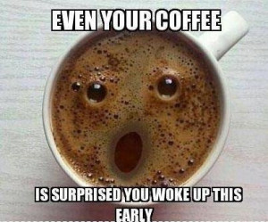 Source: http://funnyanimalpicturescat.com/stories/9238/Even-You-Coffee ...