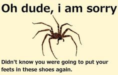 Fear of Spiders Quotes | Spider Meme - Sharenator.com More