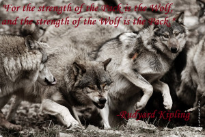 now is the law of the jungle as old and true as the sky and the wolf