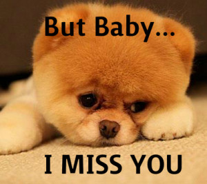 Cute Funny Pictures I Miss You But baby, i miss you - cute