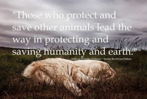 Protect animals