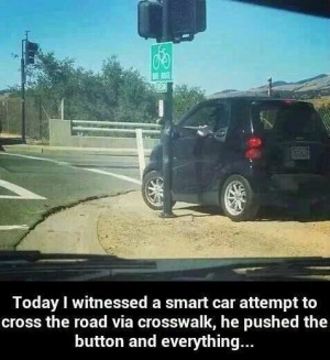funny-pictures-smart-car-attempt
