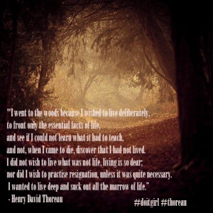 Film Inspiratif Quote From Into The Wild Pictures