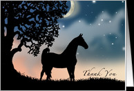 Horse Thank You Quotes