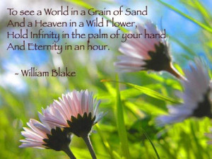 Flower, Flowery Quotes, Poems Art, Spirit Quotes, William Blake, Poems ...