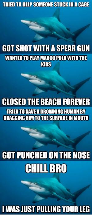 ... .net/images/2012/08/04/misunderstood-shark-meme_134404955169.jpg