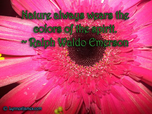 quotes, peace, beauty, flowers, ralph waldo emerson, emerson, nature ...