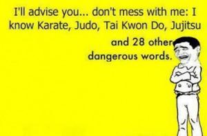 don't mess with me: I know Karate, Judo, Tai Kwon Do, Jujitsu and 28 ...