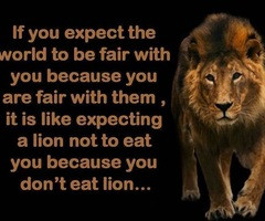 Go Back > Pix For > Lion Quotes And Sayings