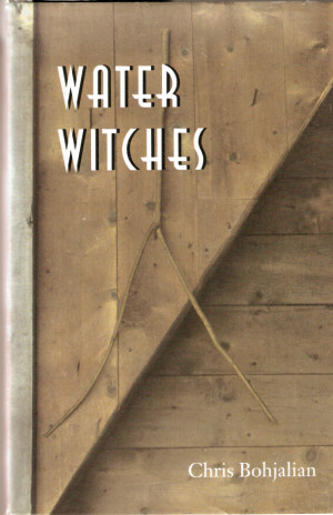 Friday's Forgotten Book: WATER WITCHES by Chris Bohjalian