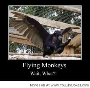 Flying Monkey! - You Like Jokes