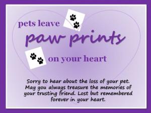 ... Cats, Loss Of Pet, Cats Ecards, Pet Leaves, Cards Sym Pet, Sympathy
