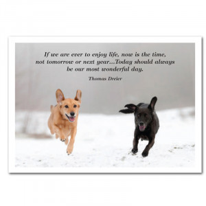two dogs running in snow with Thomas Dreier quote;