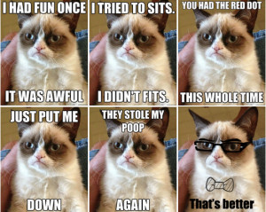 Grumpy Cat feels better