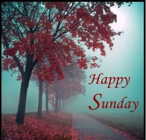 Happy Sunday Sms, Quotes, MMS, Cards, Facebook Status