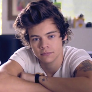 Harry Styles Is Pretty Sure He's Not Bisexual, But Isn't ...