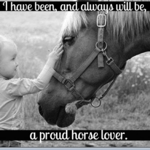 ... grey mare will always hold the most special of places in my heart