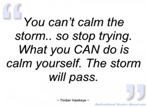you can't calm the storm timber hawkeye