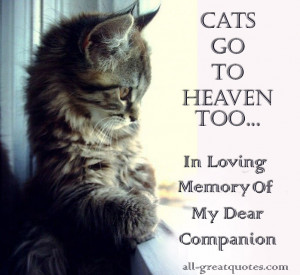 Cats Heaven – In loving memory of my dear companion – Join Me ...