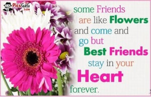 Friends are Flowers Friend Quote Pic and You Like This Friendship SMS ...