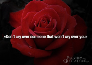 Quotes About Crying Over Someone You Love