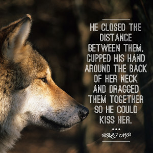 Funnies pictures about Alpha Wolf Quotes