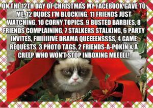 The Best of Grumpy Cat! (24 Pics)