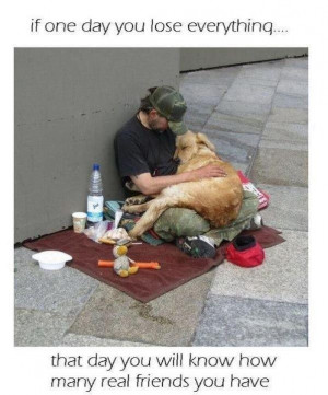 Tribute To The Loyalty Of Dogs