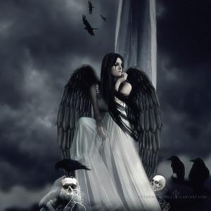 msyugioh123 Dark angel